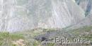 Acequias ruined village, Merida