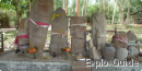 Ban Naxone megaliths, Houakoua village