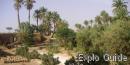 Oum Lâalag sacred oasis, Mhamid