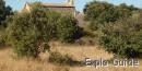 Chapelle de Cardonnet, romanic chapel, Cournonterral