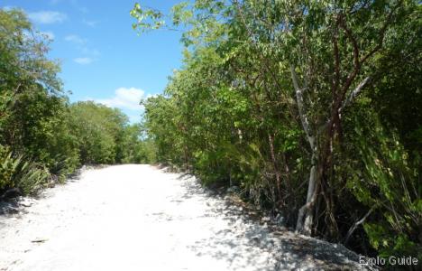 Playa Perla Blanca, Cayo Santa Maria, the access track