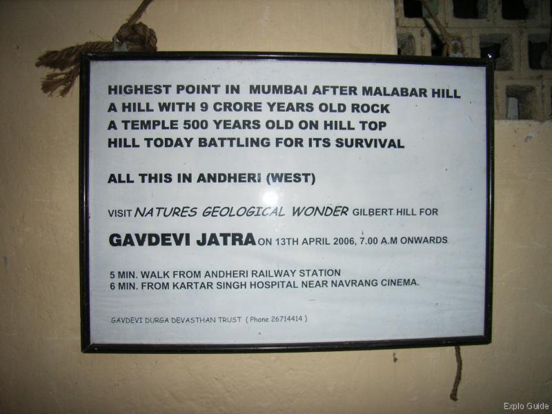 gilbert hill wiki